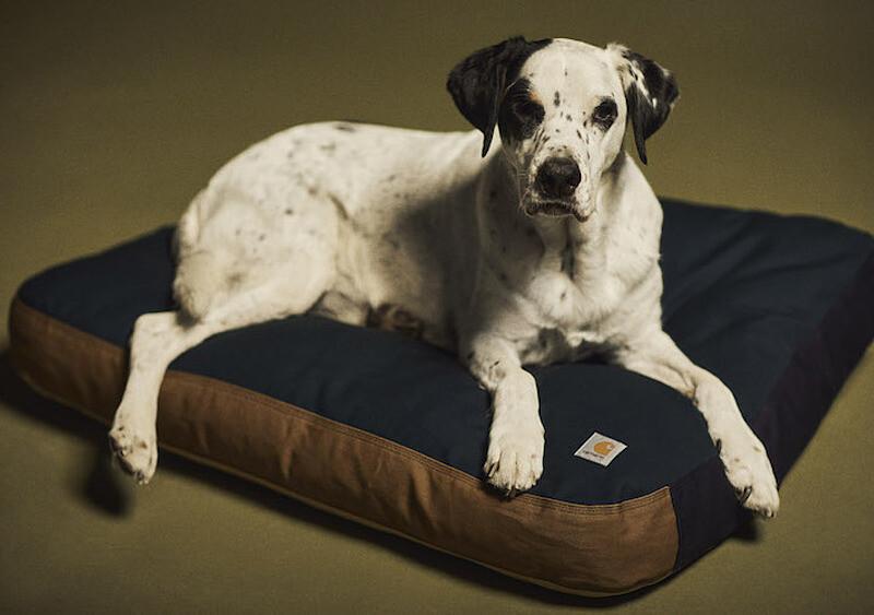 Carhartt WIP z linią spring/summer; m.in. piłka do kosza, skiety i klapki oraz... legowisko dla psa
